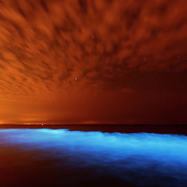Sea sparkle series - Natural light show by Roeselien Raimond