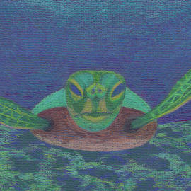 Sea Turtle by Anne Katzeff