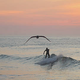 Seagull And A Surfer by Robert Banach
