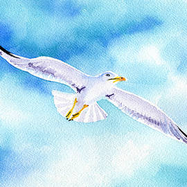 Seagull by Dora Hathazi Mendes
