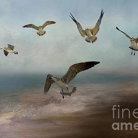 Seagulls in Flight by Kathy Kelly