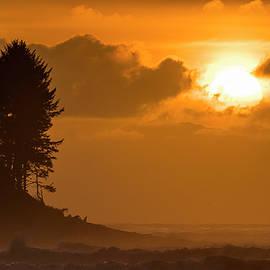 Seaside Cove Sunset by Robert Potts