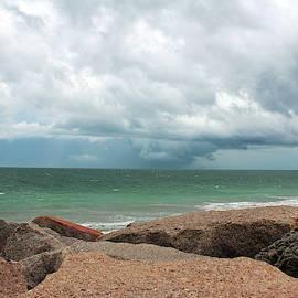 Seaside Rocks by Cynthia Guinn