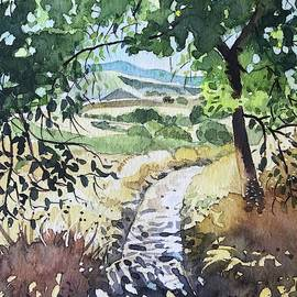 Secluded Path - Reagan Ranch  by Luisa Millicent