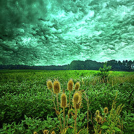 September Storm by Phil Koch