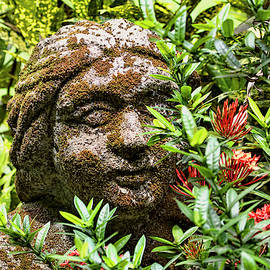 Serene Goddess by Peggy Collins