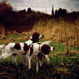 Setters Afield, Autumn By Percival by Superstock