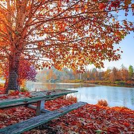 Shades of Fall by Teresa Trotter