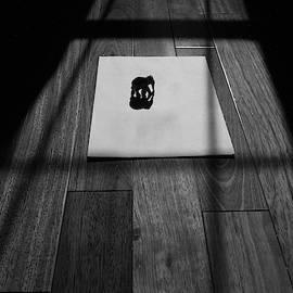 Srinivasan Venkatarajan - Shadow of Elephant on Paper in Black and White