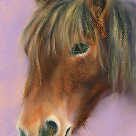 Shaggy Brown Pony by MM Anderson