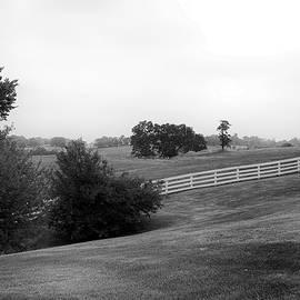 Shaker Field by Mark Jordan