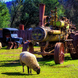 Sheep And Old  Steam Tractor by Garry Gay