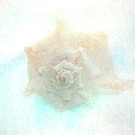 Shell-painterly by Pam  Holdsworth