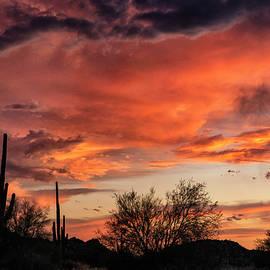 Sherbert Monsoon Sunset  by Saija Lehtonen
