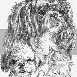 Shih Poo and Pup by Barbara Keith
