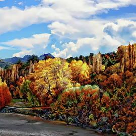 Shotover River Autumn Scene by Anthony Dezenzio