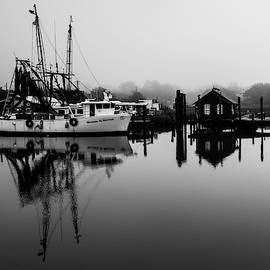 Shrimping Town  by Donnie Whitaker