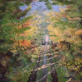 Sidewalk Trail by Rick Mcclelland