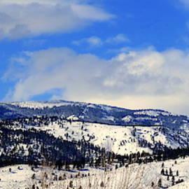 Sierra Nevada Mountains by Kay Novy
