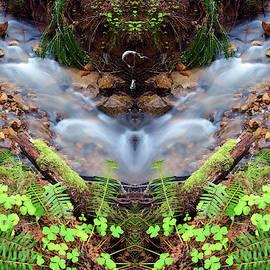 Sillow Creek by Ben Upham