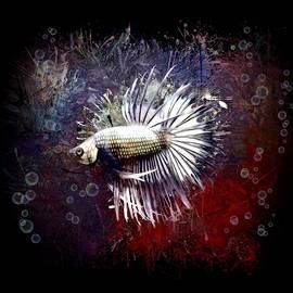 Silver Crowntail Betta Fish Portrait by Scott Wallace Digital Designs