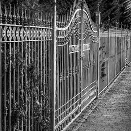 Silver Fence by Elisabeth Lucas