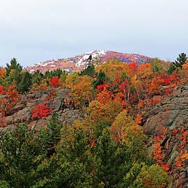 Silver Peak by Debbie Oppermann