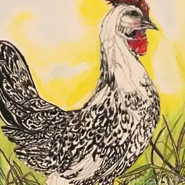 Silver Spangled Hamburg Chicken by Laurel Adams