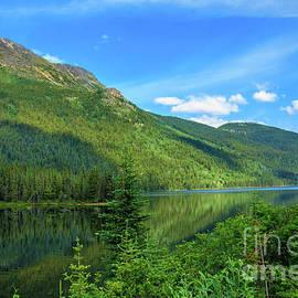 Simmon Lake by Robert Bales