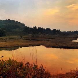 Sitka Sedge Sand Lake Eve by Chriss Pagani