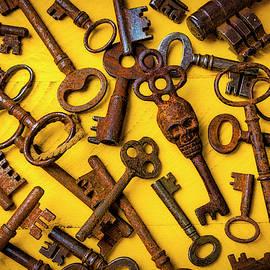 Skull Skeleton Key by Garry Gay