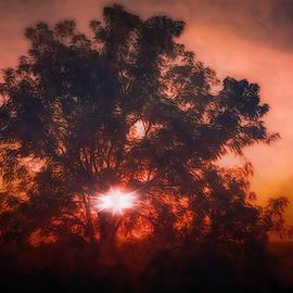 Sky Storm by Jim Love