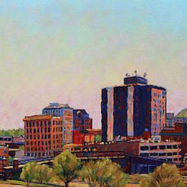 Skyshine - Roanoke Virginia Skyline by Bonnie Mason