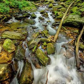 Smith Creek Anna Ruby Falls Georgia Landscape Art by Reid Callaway
