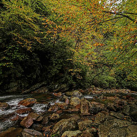 Smoky Mountains National Park Rapids and Fall Colors by Judy Vincent