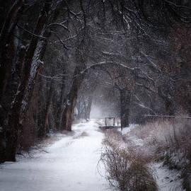 Jane Selverstone - Snow along the Acequia
