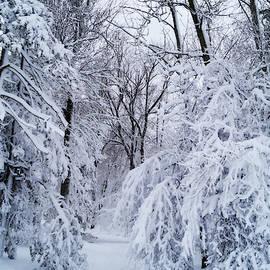 Rahdne Zola - Snow and Silence