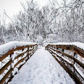 Ira Marcus - Snow Covered Bridge