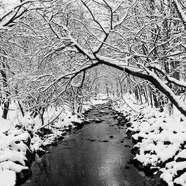 Liz Albro - Snow Covered Creek