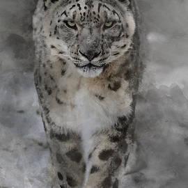 Snow Leopard II by Brad Allen Fine Art