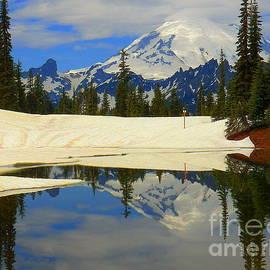 Art Sandi - Snow Starting to Melt Mount Rainier National Park Washington