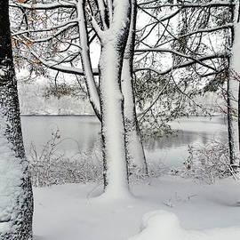 Snowfall in March by Lyuba Filatova
