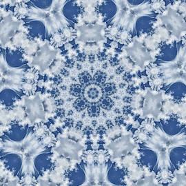 Snowflake by Trish Tritz