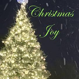 Snowy Christmas Joy by Debra Grace Addison