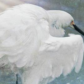 Snowy egret art  by Geraldine Scull