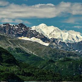 Snowy Mountains  by Edward Garey