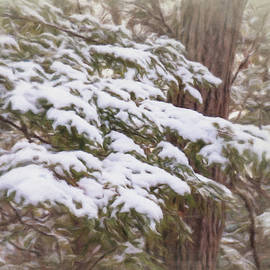 Leslie Montgomery - Snowy Pine Boughs
