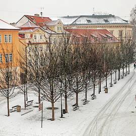 Jenny Rainbow - Snowy Prague. Na Kampe