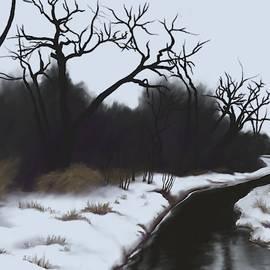 Jeanne Cutler - Snowy Turkey Creek