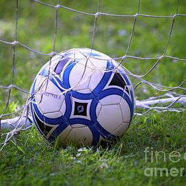 Soccer Ball by Mark Miller